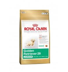 Pienso Royal Canin Golden Retriver Junior Perro