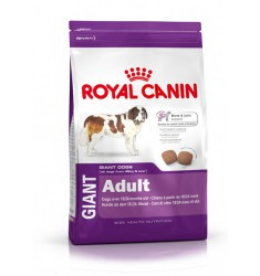Pienso Royal Canin Giant Adult Perro