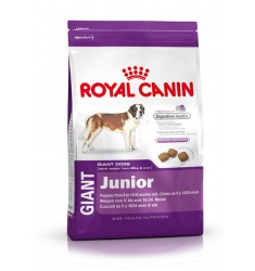 Pienso Royal Canin Gigant Junior Perro