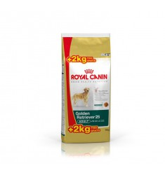 Pienso Royal Canin Golden Retriver Perro