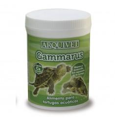 ARQUIVET GAMMARUS