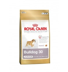 Pienso Royal Canin Bulldog Junior Perro