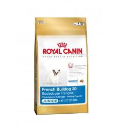 Pienso Royal Canin Bulldog Frances Junior Perro