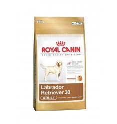 Pienso Royal Canin Labrador Retriver 30 Perro
