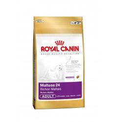 Pienso Royal Canin Maltese 24 Perro