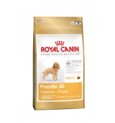 Pienso Royal Canin Poodle 30 Perro