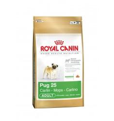 Pienso Royal Canin Pug 25 Perro