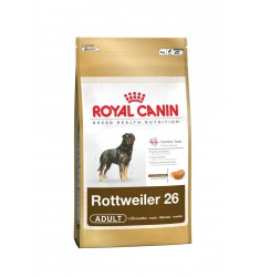 Pienso Royal Canin Rottweiler 26 Perro