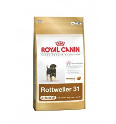 Pienso Royal Canin Rottweiler 31 12Kg Perro