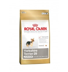 Pienso Royal Canin Yorkshire Terrier 29 Perro
