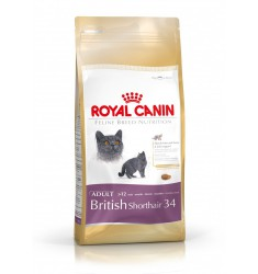 Pienso Royal Canin British Shorthair Gato
