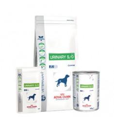 Pienso Royal Canin Urinary S/O
