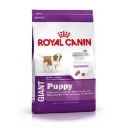 Pienso Royal Canin Giant Puppy Perro