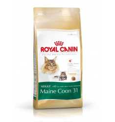 Pienso Royal Canin Maine Coon Gato