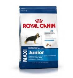 Pienso Royal Canin Maxi Junior Perro