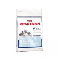 Pienso Royal Canin Maxi Starter Perro