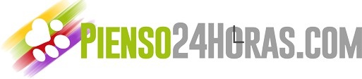 Pienso24horas.com